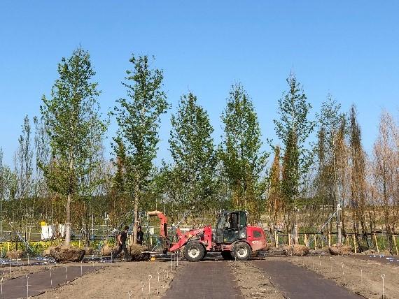 floraide-boom-planten-voertuig